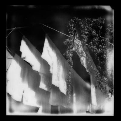 Polaroid2014-019