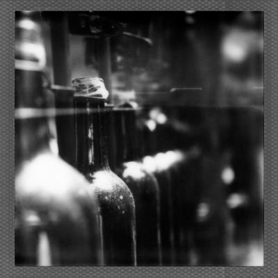Polaroid2014-024