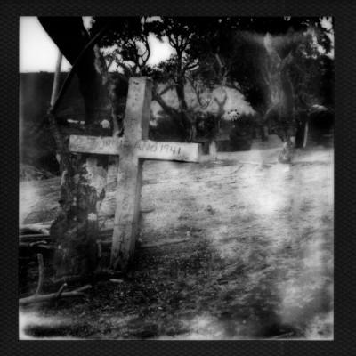 Polaroid2014-039